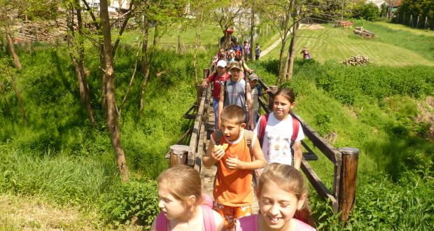 Erdei iskola minősített modulok